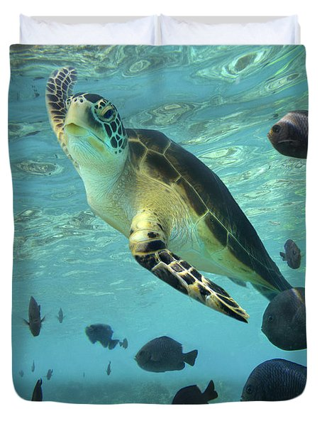 Duvet Cover featuring the photograph Green Sea Turtle Balicasag Island by Tim Fitzharris