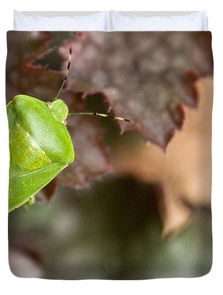 Green Stink Bug Duvet Cover