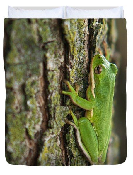Green Tree Frog Thinking Duvet Cover by Douglas Barnett