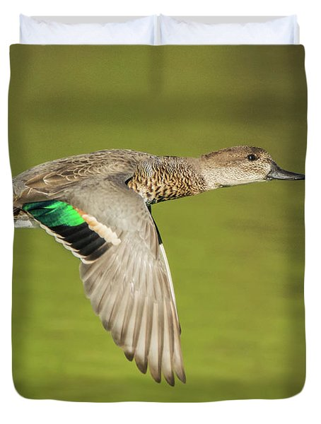 Green-winged Teal 6320-100217-2cr Duvet Cover