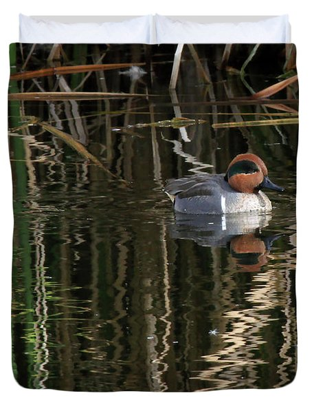 Green Winged Teal  Duvet Cover