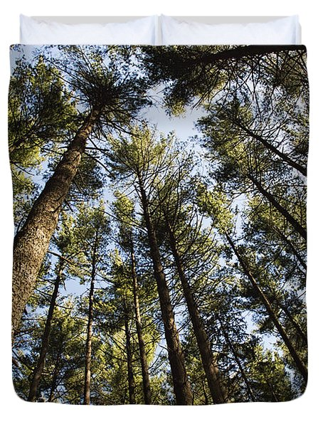 Greenbank Pines Duvet Cover