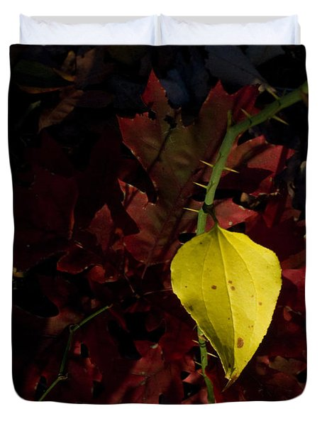 Greenbriar Leaf In Evening Sun Duvet Cover