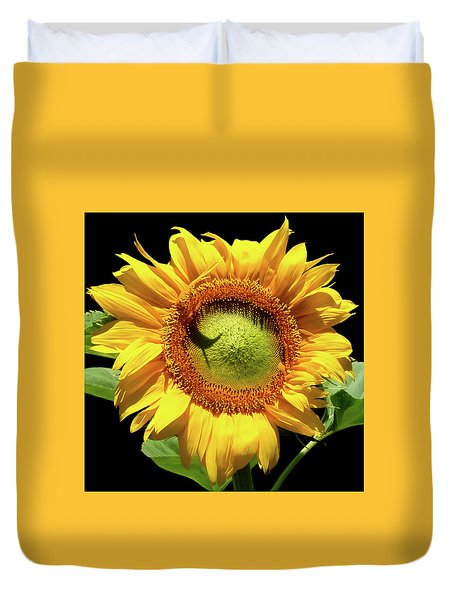 Duvet Cover featuring the photograph Greenburst Sunflower by Rona Black