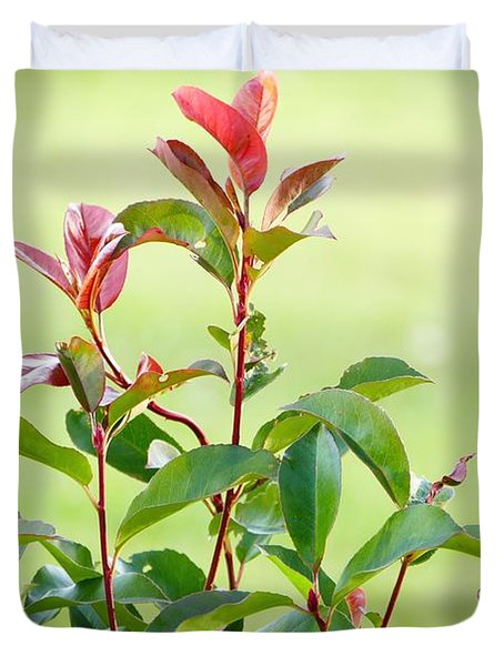 Greenery And Red Duvet Cover