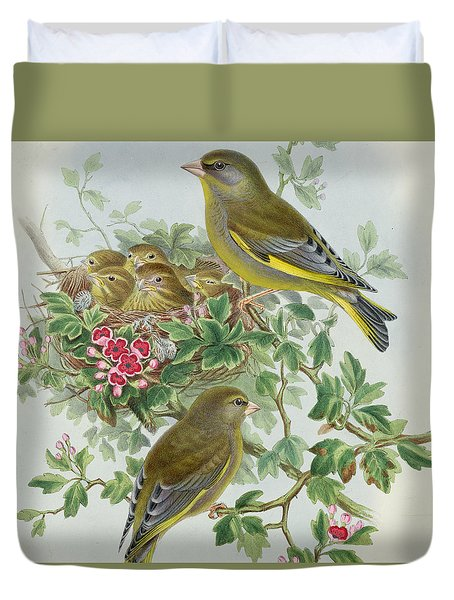 Greenfinch Duvet Cover by John Gould