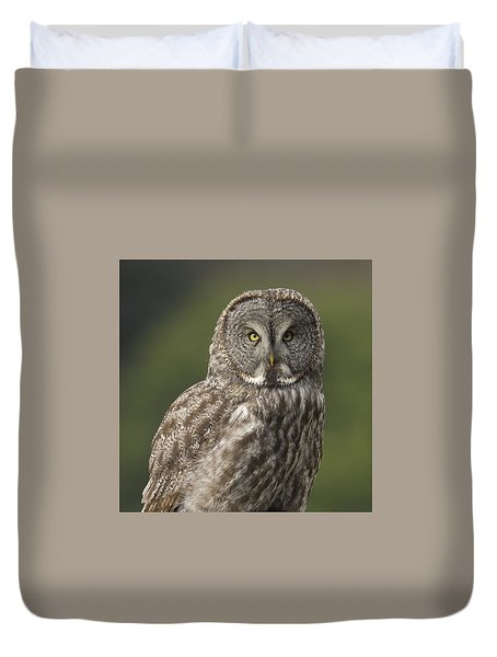 Great Gray Owl Portrait Duvet Cover by Doug Herr