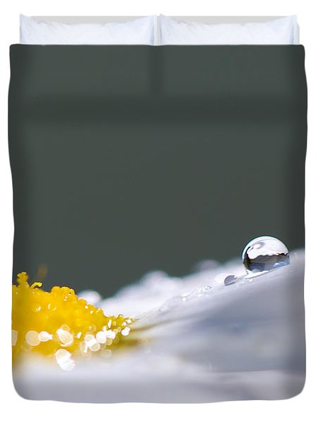Grey And Yellow Daisy Duvet Cover by Lisa Knechtel