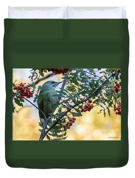 Grey Headed Woodpecker Female Duvet Cover