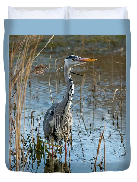 Grey Heron Hunting Duvet Cover
