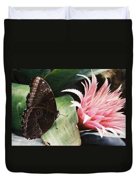 Grey Pansy Pink Bromeliad Duvet Cover