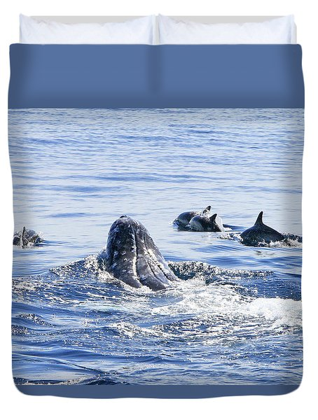 Grey Whale 1 Duvet Cover