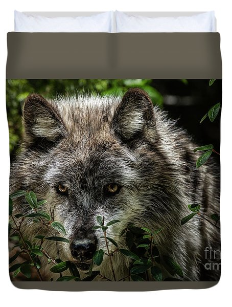 Grey Wolf Duvet Cover