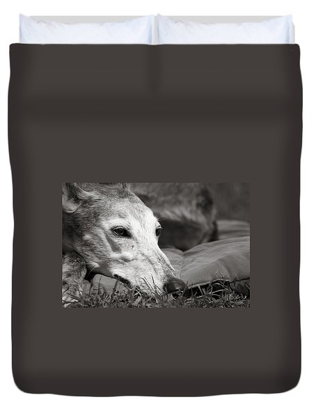 Greyful Duvet Cover by Angela Rath