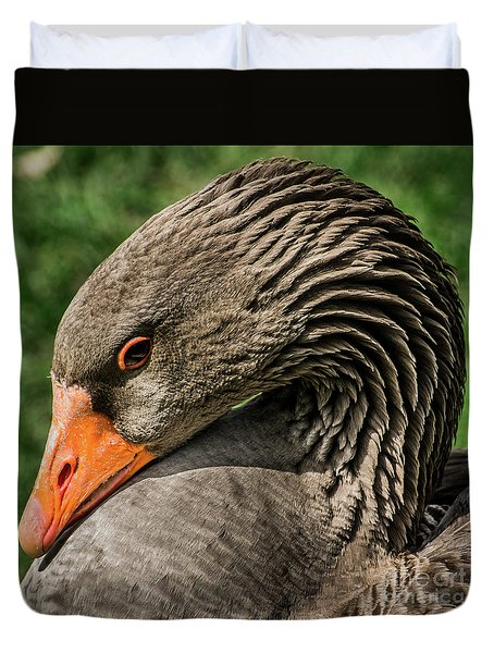 Greylag Goose Portrait  Duvet Cover by Gary Whitton