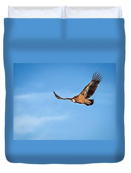 Griffon Vulture Duvet Cover by Meir Ezrachi