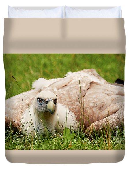 Duvet Cover featuring the photograph Griffon Vulture by Nick Biemans