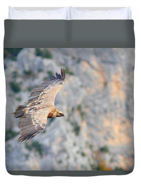 Griffon Vulture Duvet Cover by Richard Patmore