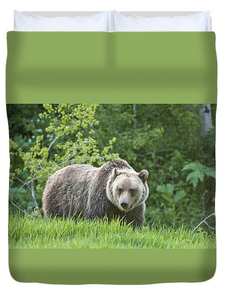 Grizzly Bear Duvet Cover by Gary Lengyel