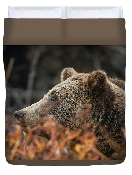 Grizzly Bear Portrait In Fall Duvet Cover
