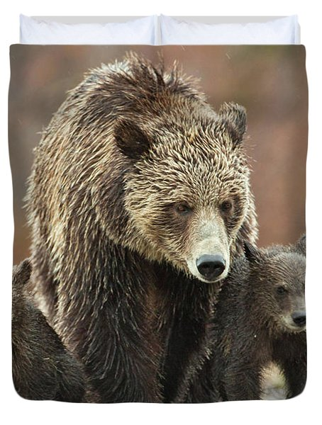 Grizzly Family Duvet Cover