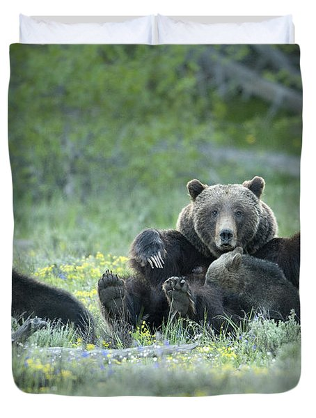 Grizzly Romp - Grand Teton Duvet Cover