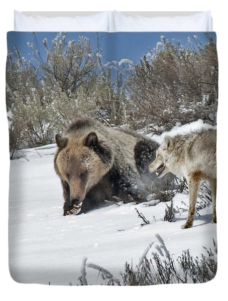 Grizzly With Coyote Duvet Cover