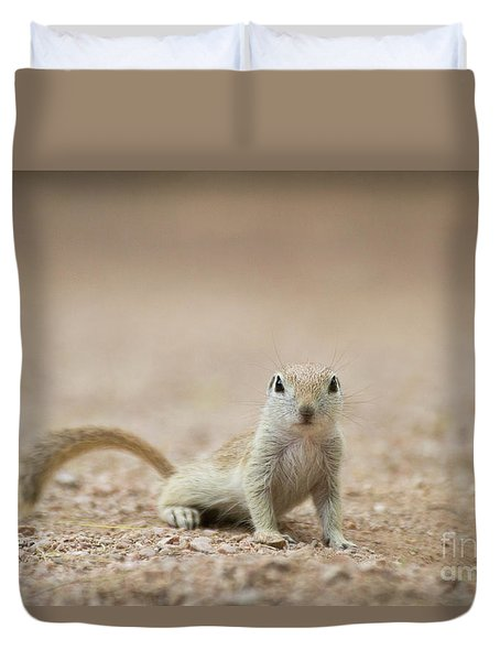 Ground Squirrel I See You Duvet Cover by Ruth Jolly