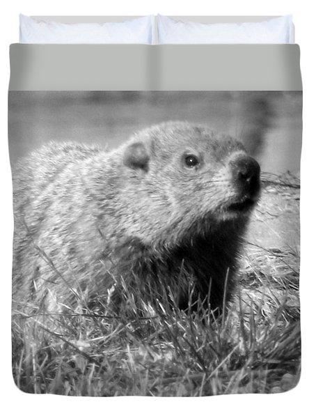 Groundhog Duvet Cover by Erika Kennedy