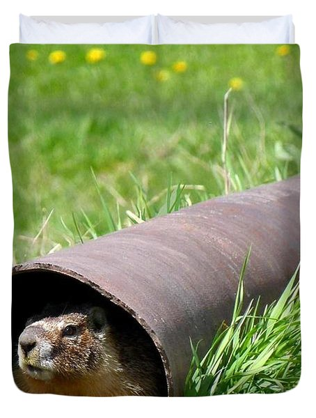 Groundhog In A Pipe Duvet Cover by Will Borden