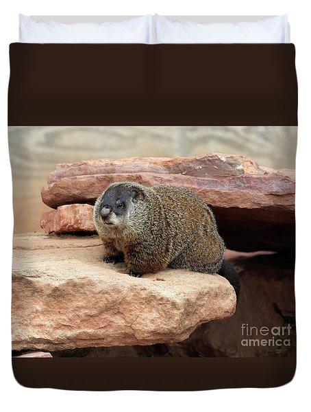 Groundhog Duvet Cover by Louise Heusinkveld