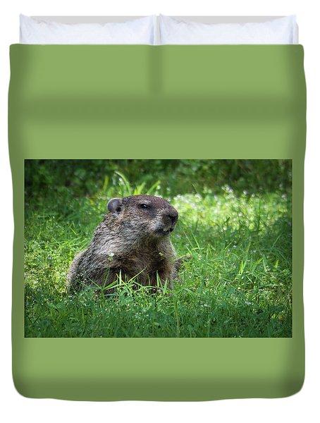 Groundhog Posing  Duvet Cover