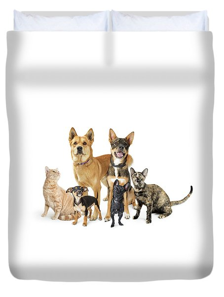 Group Of Cats And Dogs Looking Up On White Duvet Cover