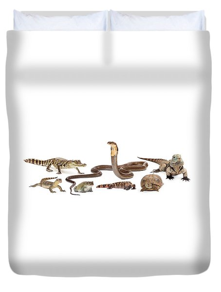 Group Of Various Reptiles Duvet Cover