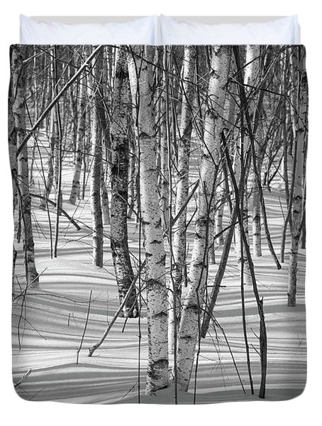 Group Of White Birches Duvet Cover