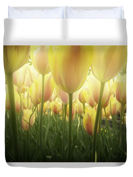 Growing  Tulips  Duvet Cover by Anastasy Yarmolovich