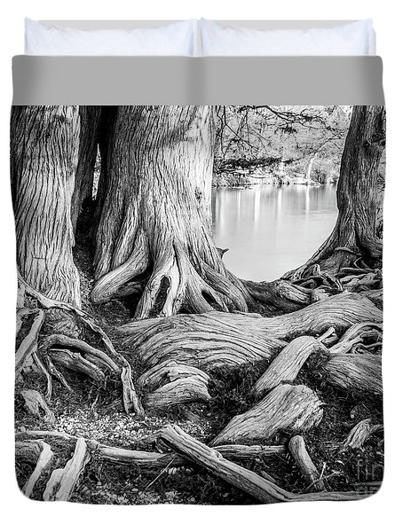 Guadalupe Bald Cypress In Black And White Duvet Cover