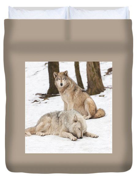 Guarding His Companion Duvet Cover by Gary Slawsky