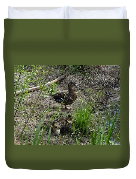 Guarding The Ducklings Duvet Cover by Donald C Morgan