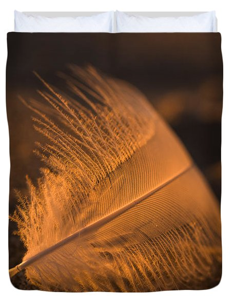 Gull Feather At Sunset Duvet Cover