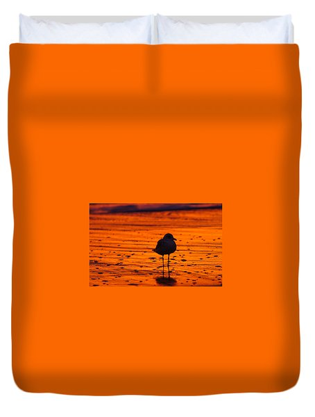 Gull Caught At Sunrise Duvet Cover by Allan Levin