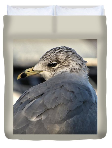Duvet Cover featuring the photograph Gull by Jennifer Wheatley Wolf