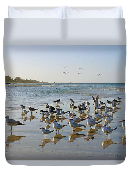 Gulls And Terns On The Sanbar At Lowdermilk Park Beach Duvet Cover