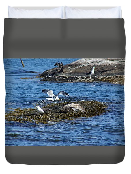 Gulls On Rocks 1 Duvet Cover