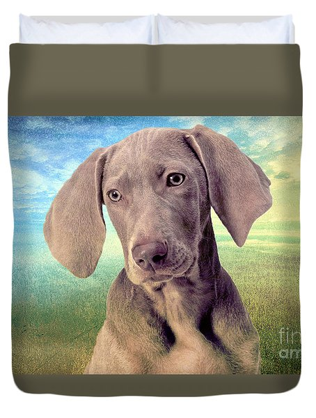 Gunshy Weimaraner Looking For Loving Home Duvet Cover