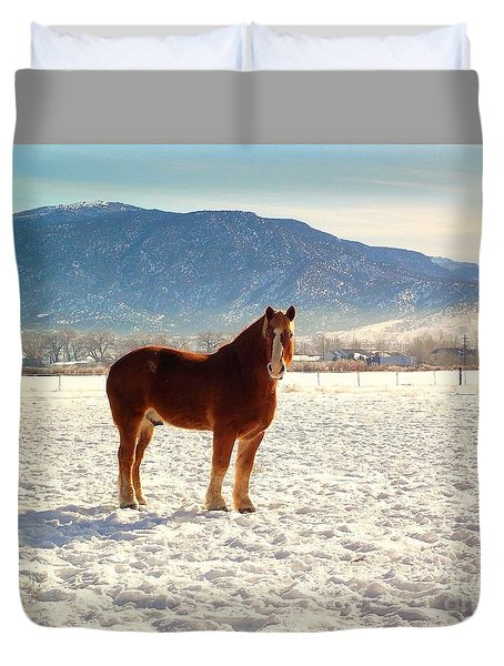 Duvet Cover featuring the photograph Gus by Deborah Moen