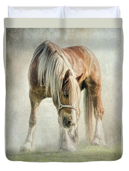 Gypsy In Morning Mist. Duvet Cover by Brian Tarr