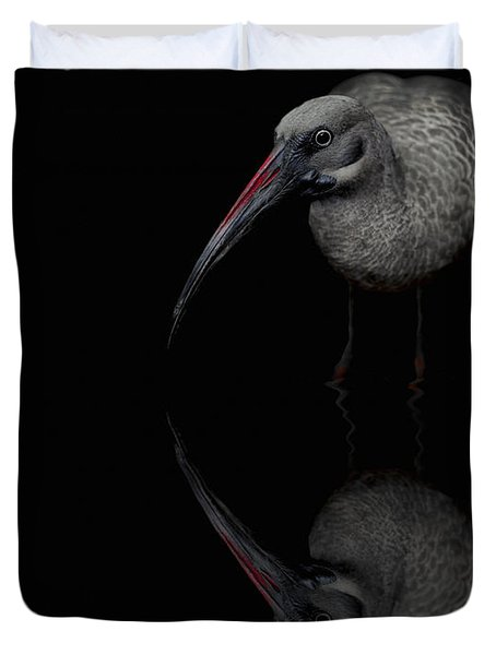 Duvet Cover featuring the photograph Hadada Ibis Reflections - Bird - African by Jason Politte