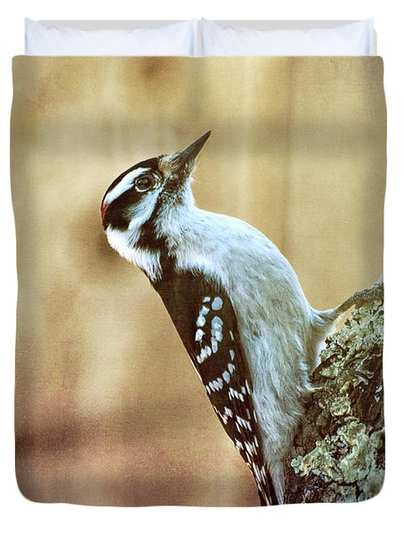 Hairy Woodpecker Duvet Cover by Bob Orsillo