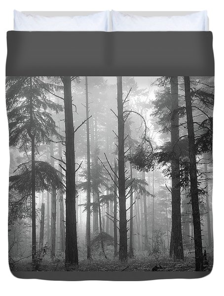 Duvet Cover featuring the photograph Half Century by Mary Amerman